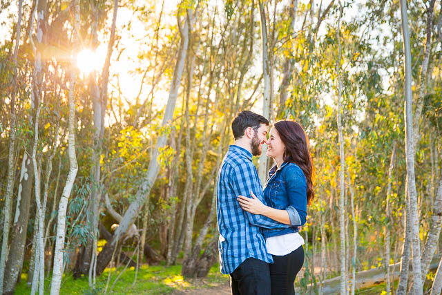 Sunset engagement photos at Coronado Butterfly Preserve