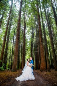 Bride and groom portraits at their Rotorua Redwood Forest wedding in New Zealand.