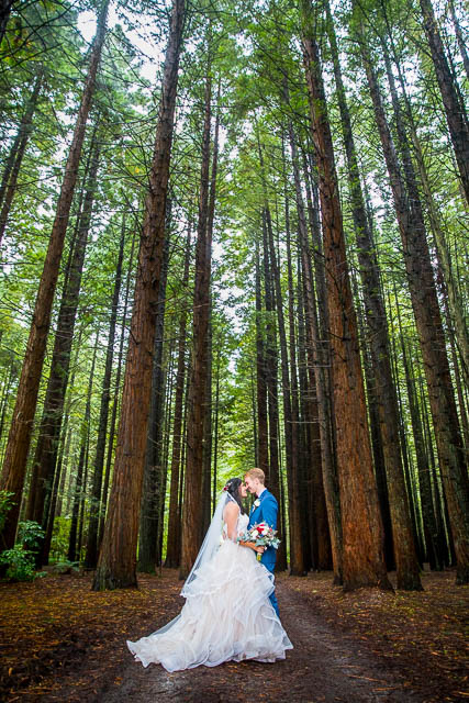 Newlyweds hug in the Rotorua Redwoods Forest after their Under the Sails wedding ceremony in Rotorua, New Zealand.