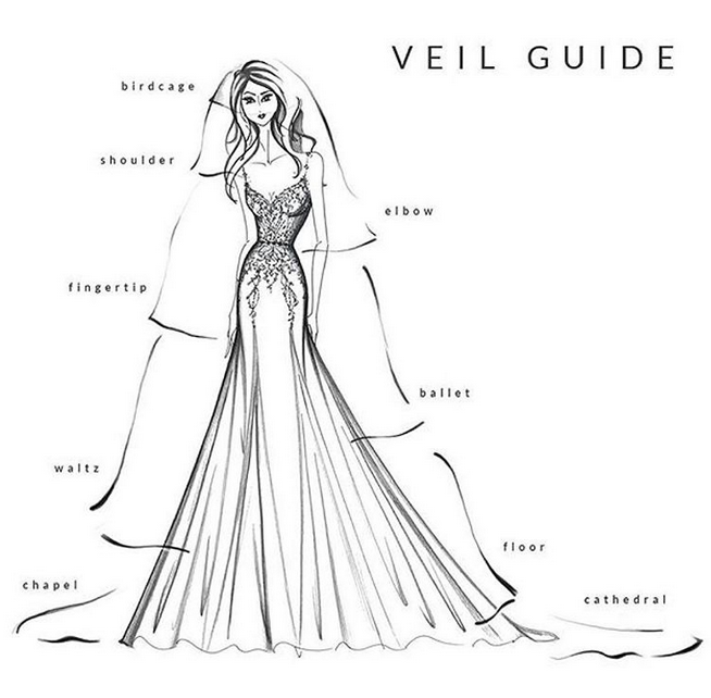 Wedding veil guide, depicting different styles and lengths of veils.