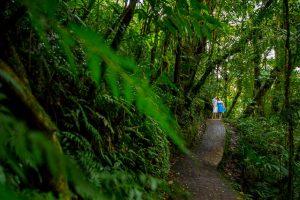 Creative and adventurous engagement photos in Monteverde, Costa Rica.