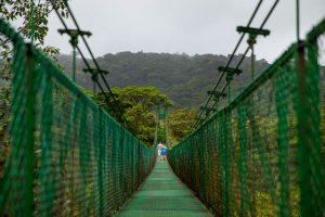 Adventurous engagement photos in Monteverde, Costa Rica.